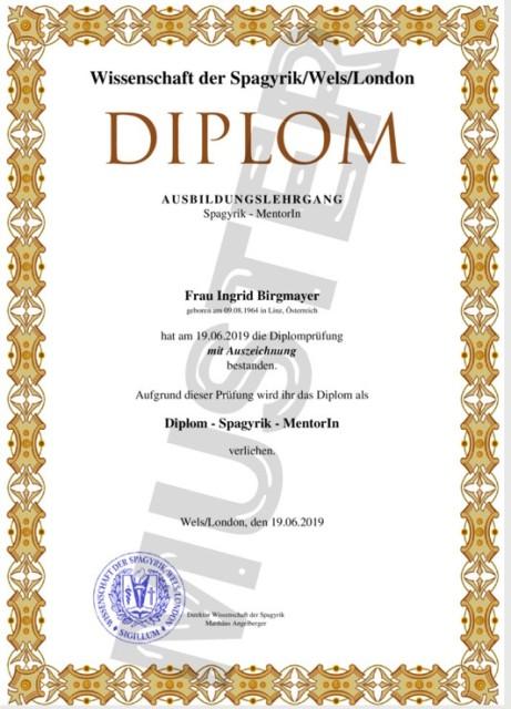 Ausbildung zum Dipl. Spagyrik -Mentor/IN